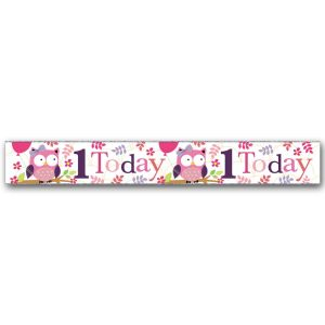 Simon Elvin Happy 1st Birthday Large Foil Party Banner - Girls
