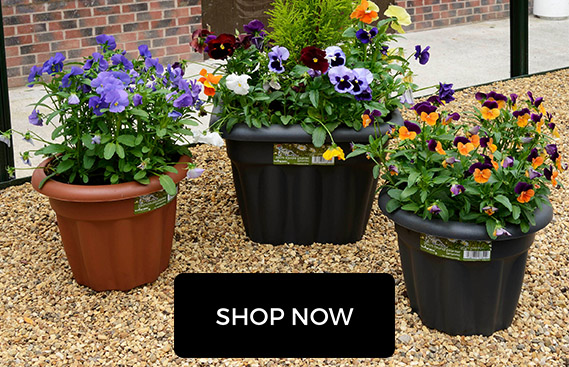 Gardening Planters and Pots
